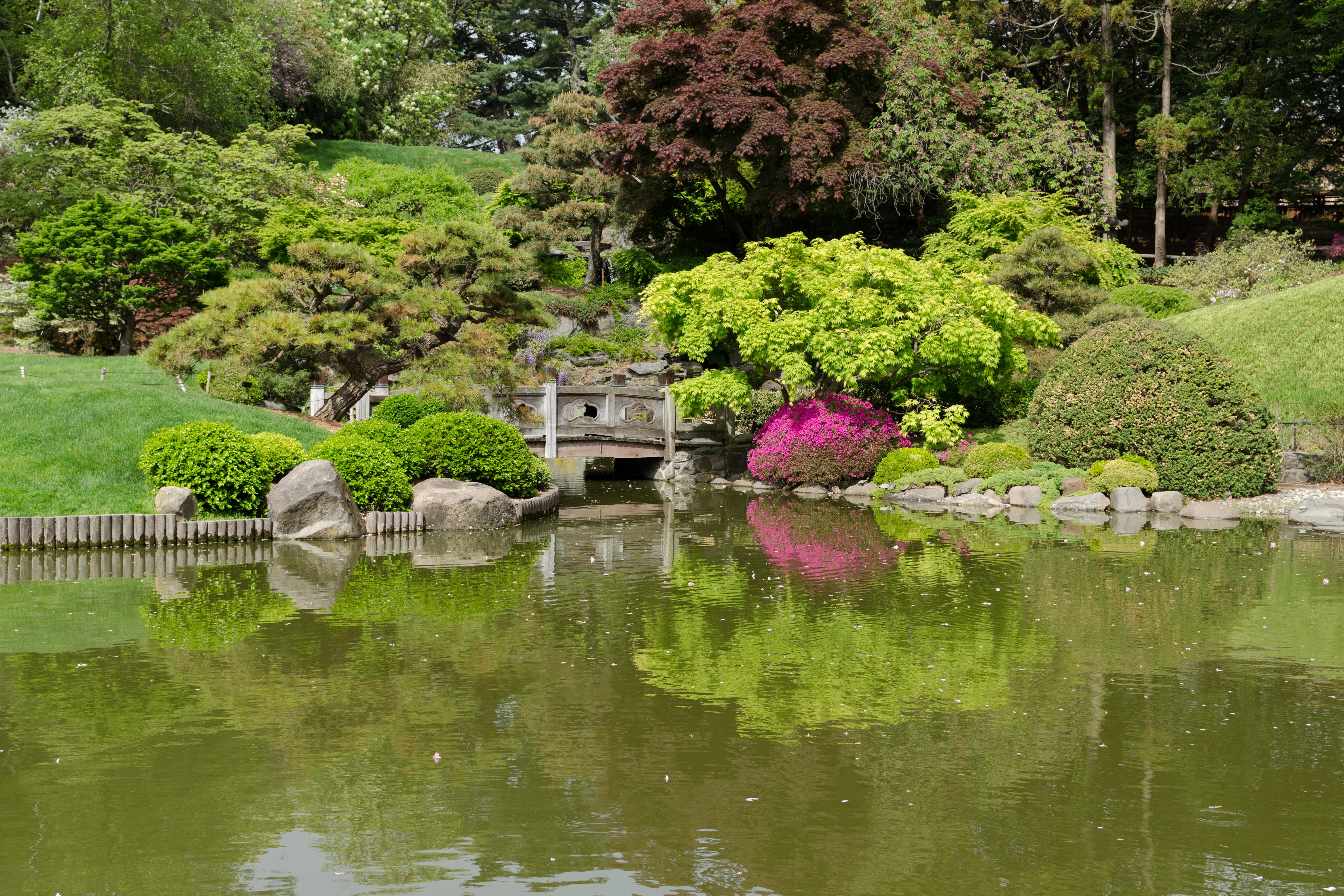 the top ten best botanical gardens in the world