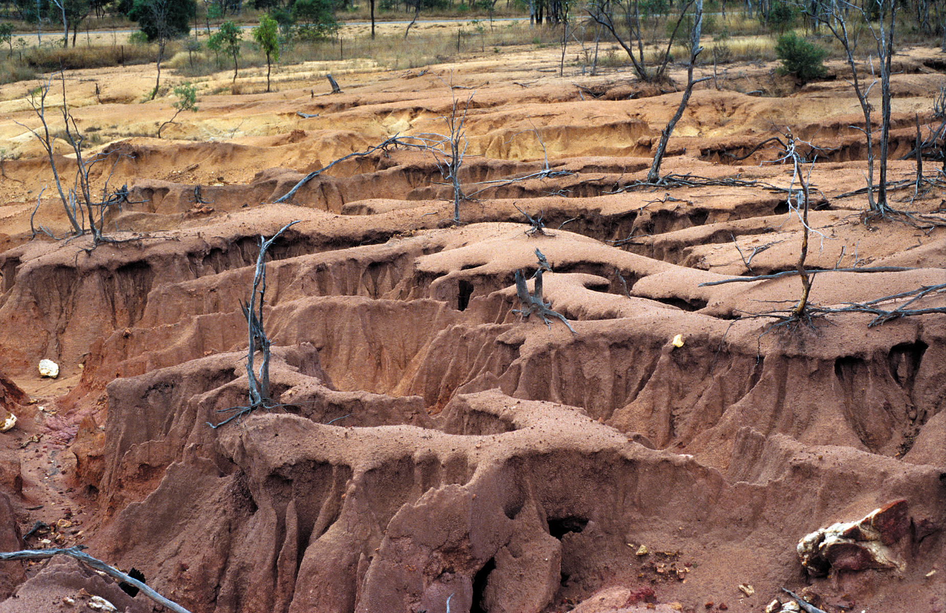Image gallery sheet erosion for Soil erosion causes