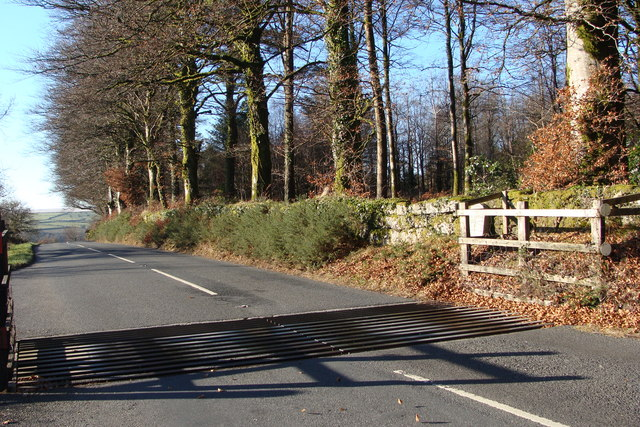 File:Cattle grid near the turning to Hexworthy - geograph.org.uk - 1226277.jpg
