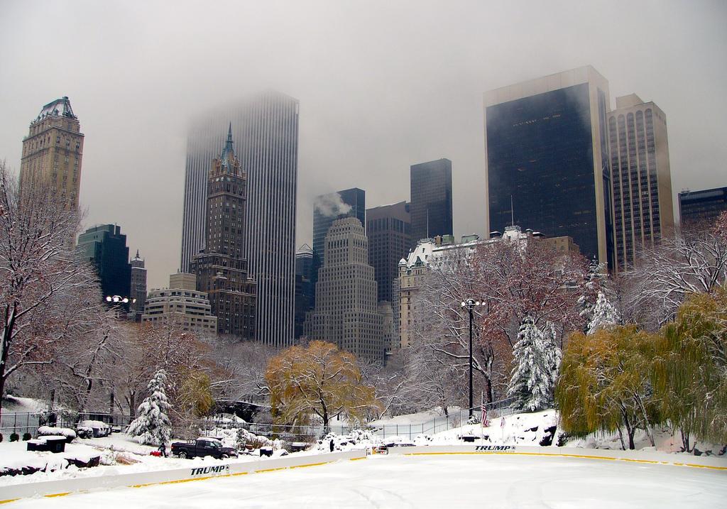 central park winter run