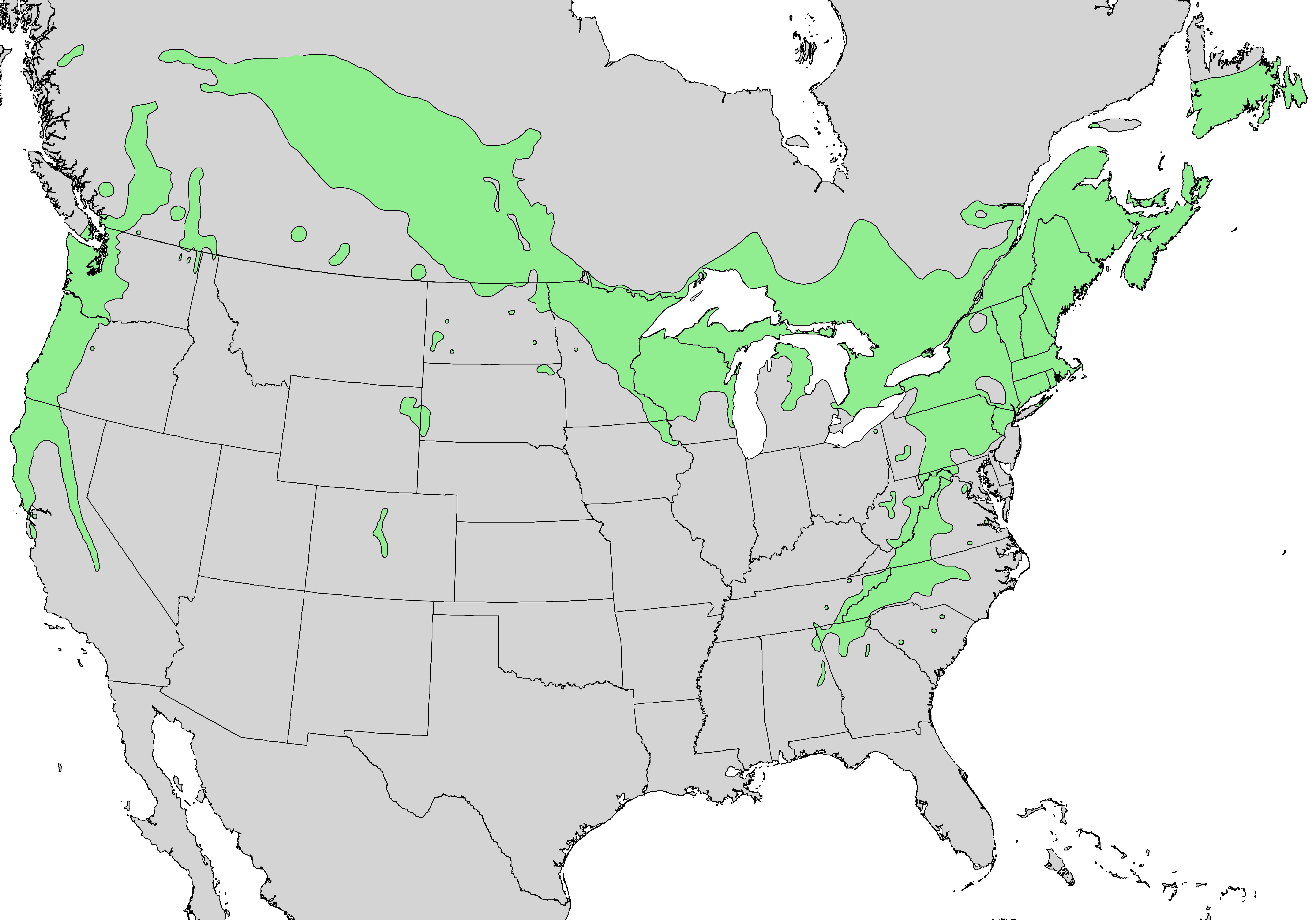 FileCorylus Cornuta Range Map Png Wikimedia Commons - Us government tree map