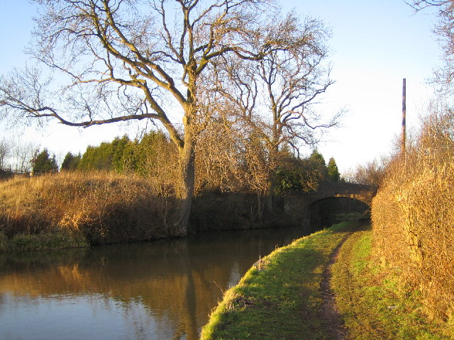 Coventry Canal, Mancetter - geograph.org.uk - 103991
