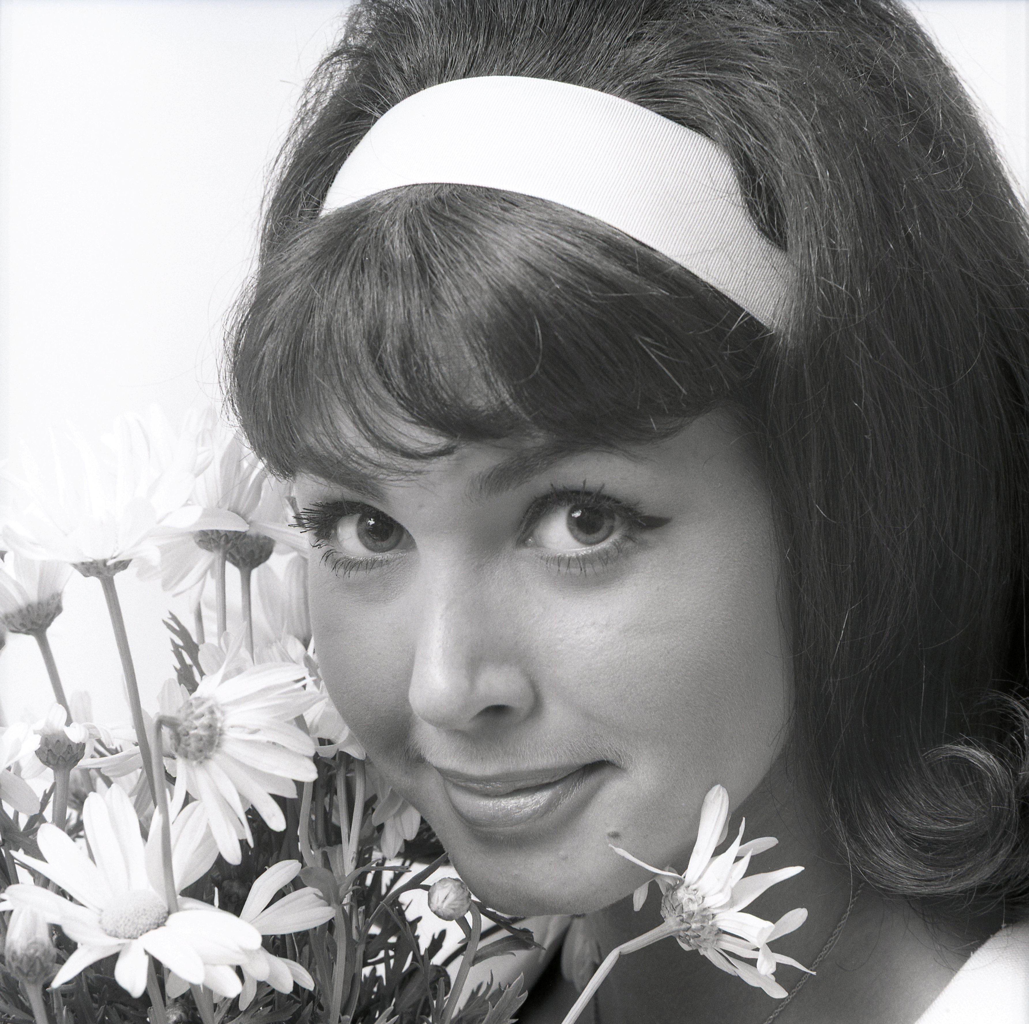 Donna Loren Wikiwand