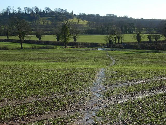 Farmland, Avon Dassett - geograph.org.uk - 663464