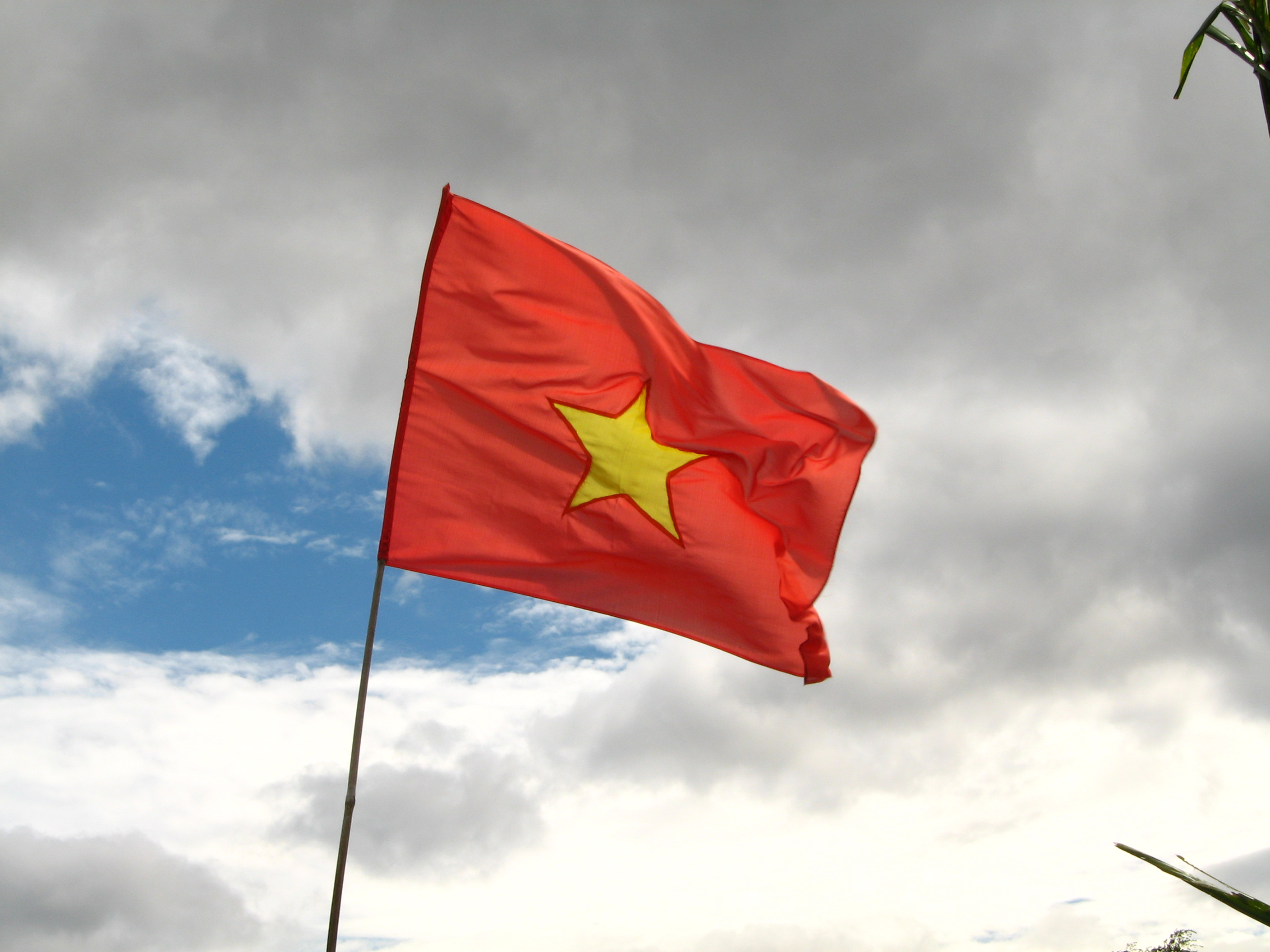 The Trouble With Vietnam S Cyber Security Law The Diplomat