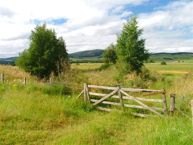 Gate and Drainage Ditch with Pressendye in the Distance - geograph.org.uk - 37321.jpg