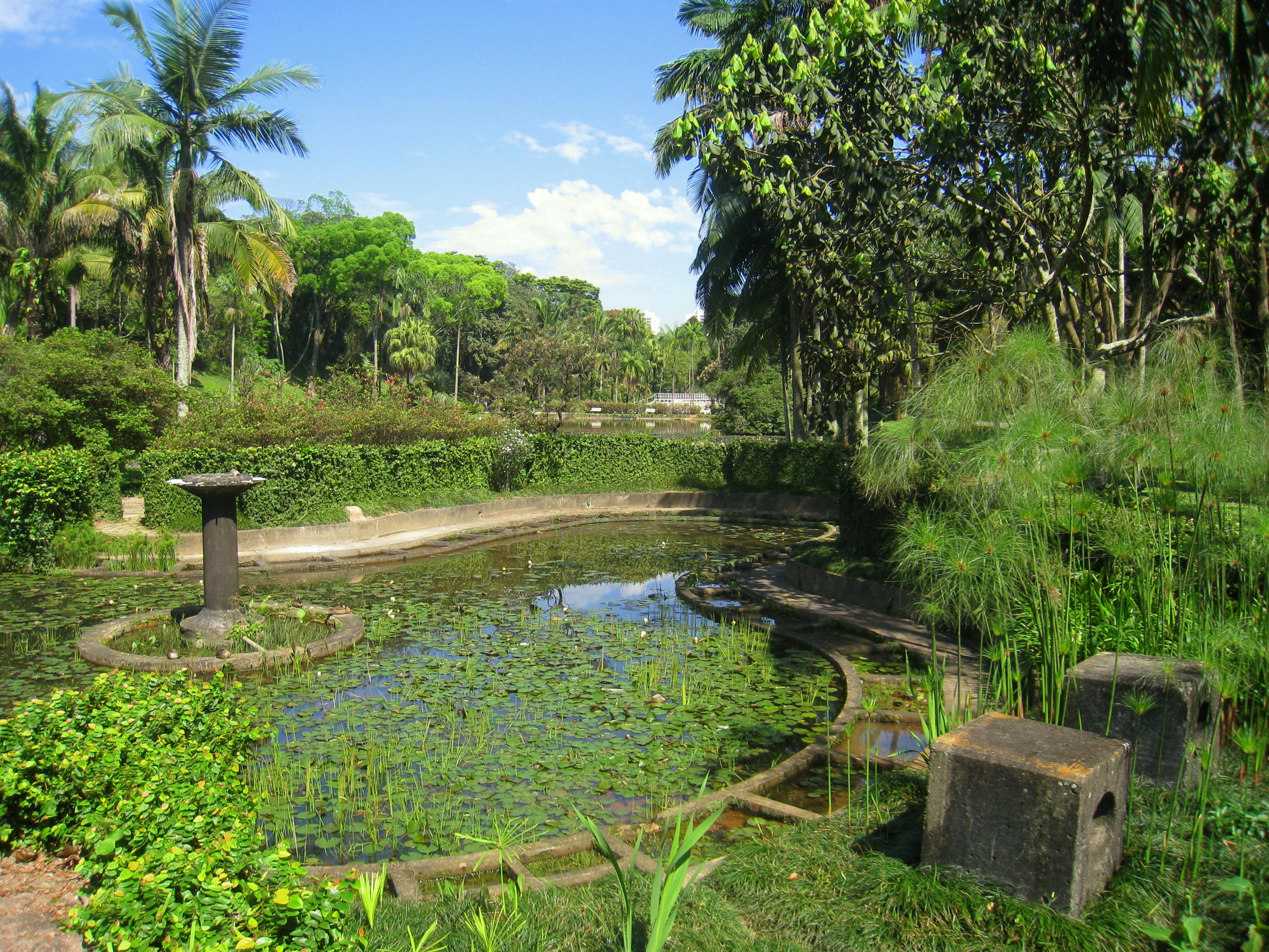 File:Jardim Bot?nico de S?o Paulo - general view IMG 0109 ...