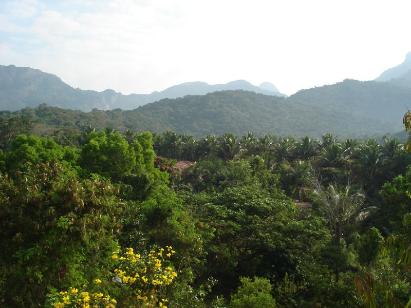 Western Ghats near Coimbatore, India.