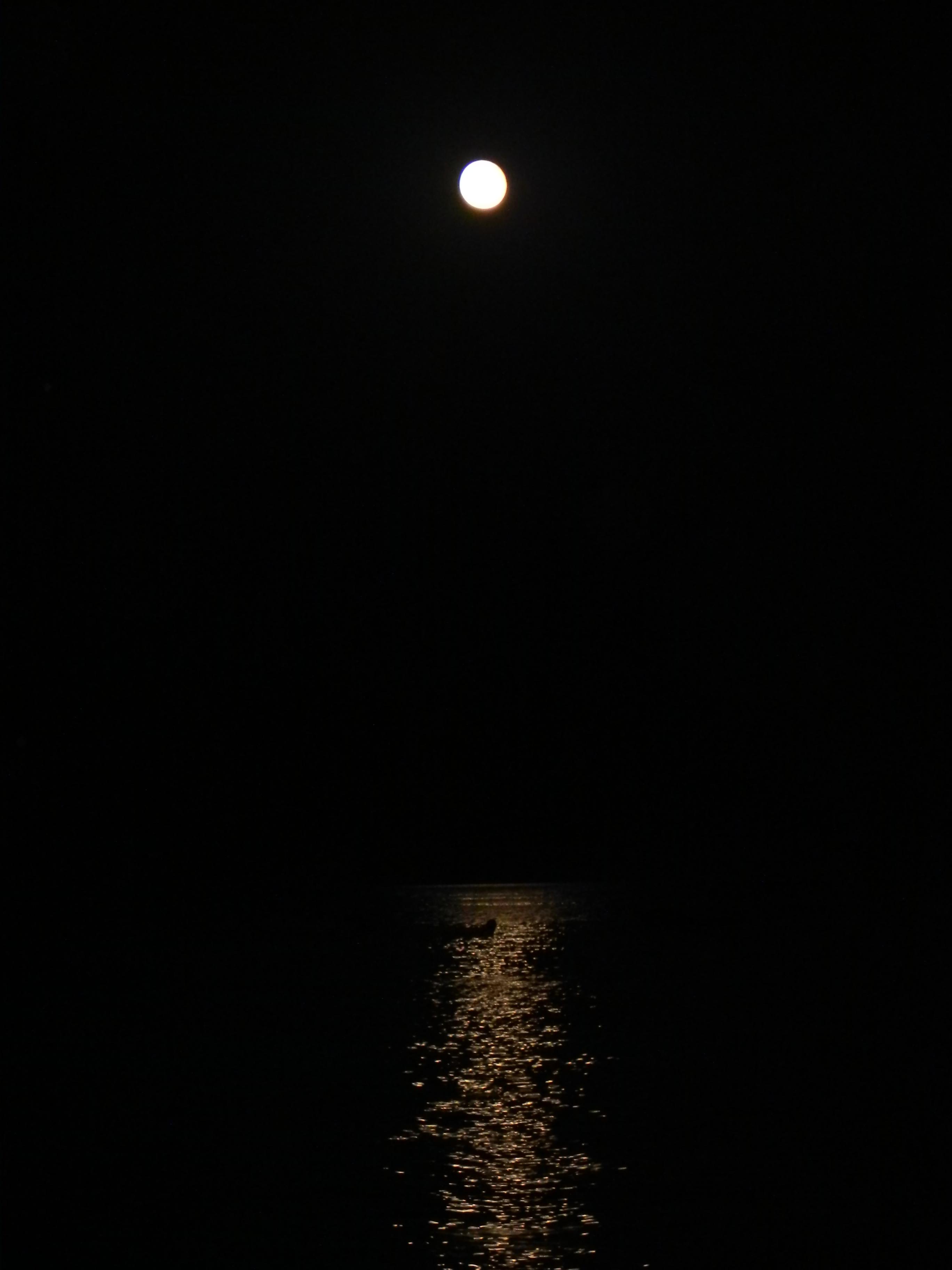 Filela Luna Sul Marejpg Wikimedia Commons
