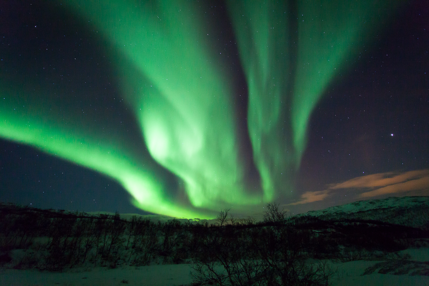 """Image result for the northern lights"""""""