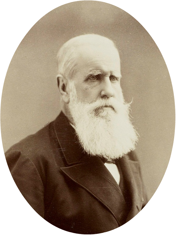 Image of Dom Pedro II from Wikidata