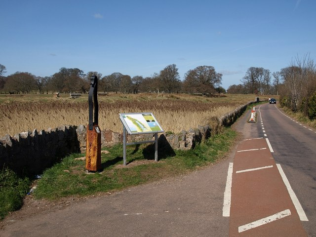 Road alongside marshland, Powderham - geograph.org.uk - 1224377