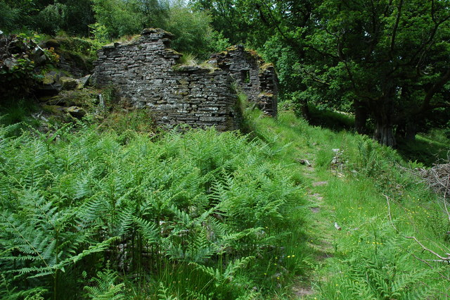 Ruin beside the Usk Valley Walk - geograph.org.uk - 1381195