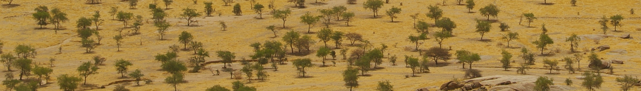 Sahel Climate And Natural Resources