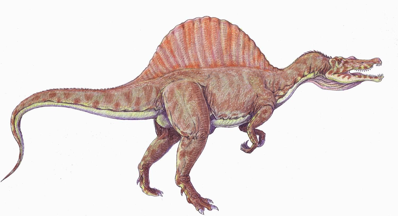 Spinosaurus Spinosaurus2DB