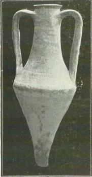 Castrul roman Piroboridava
