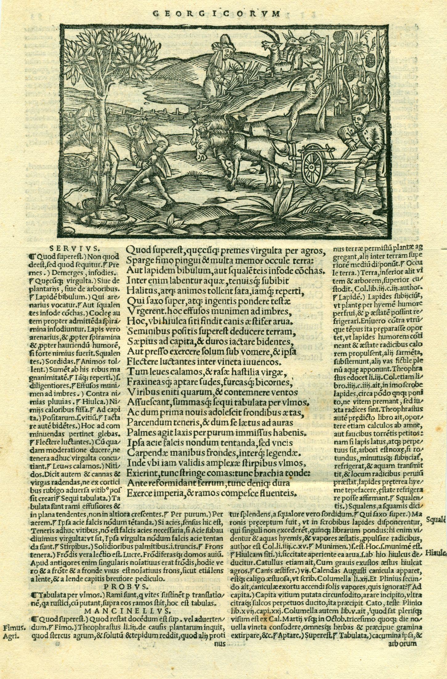 ''Bucolica, Georgica, et Aeneis, Servii Mauri Honorati & Aelii Donati commentariis illustrata'' ([[Basel