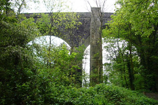 Viaduct, Ivybridge - geograph.org.uk - 617888