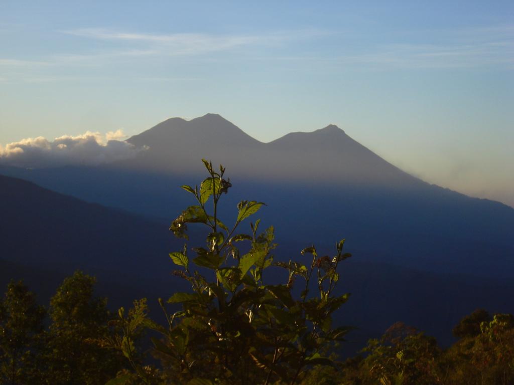 File:Volcan de Agua-Acatenango-Fuego.jpg - Wikimedia Commons