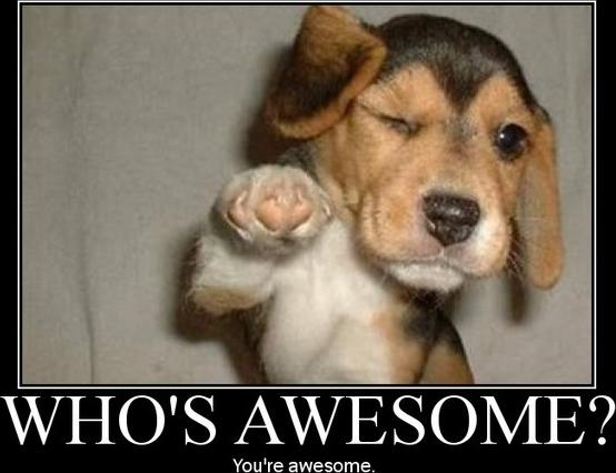 File:Who-is-awesome.jpg