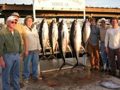 Commercial fishing license louisiana for Louisiana lifetime fishing license