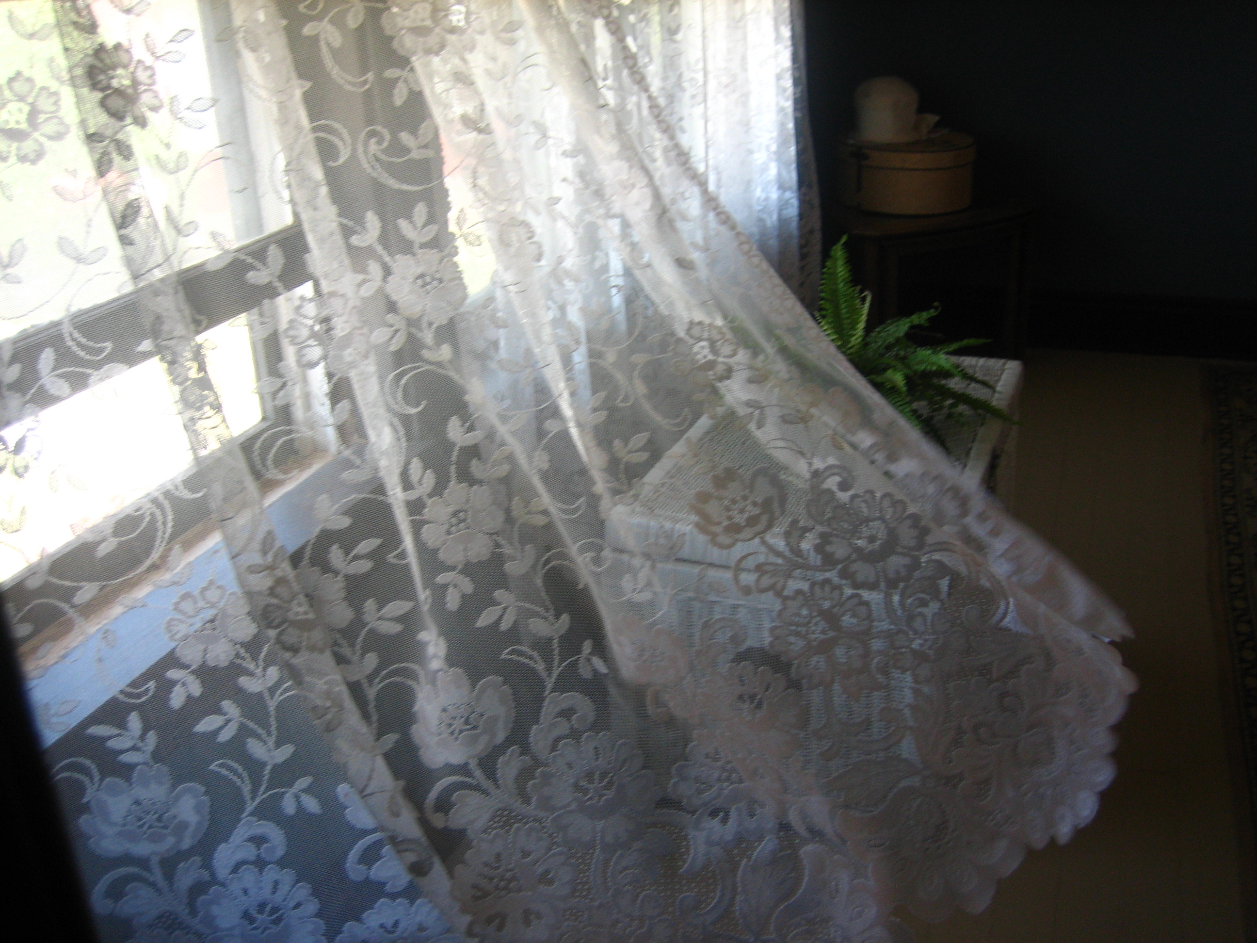 Lace Curtains And How To Clean Them Properly Wikipedia