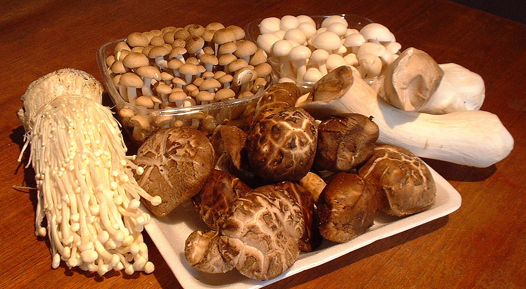 Asian Mushrooms Images