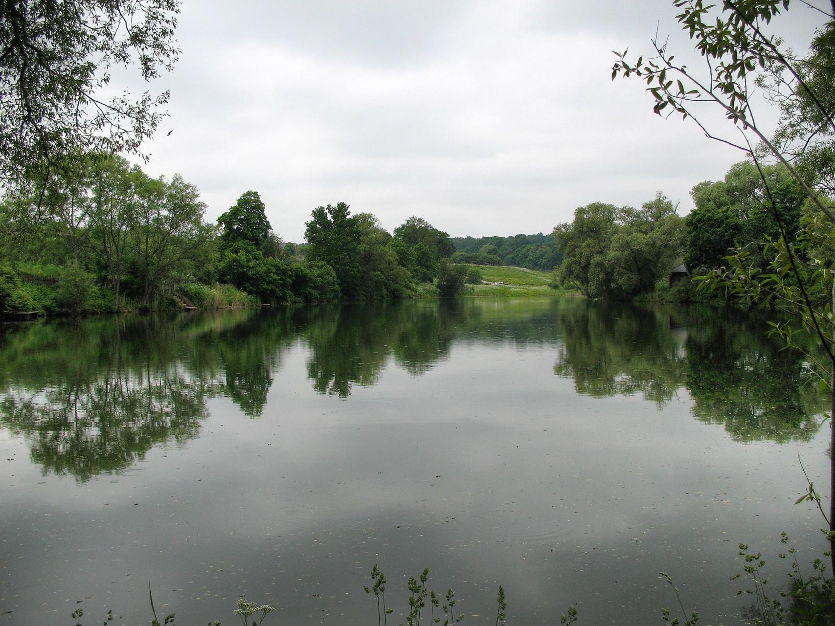 File Big Pond Img 3449 Wikimedia Commons