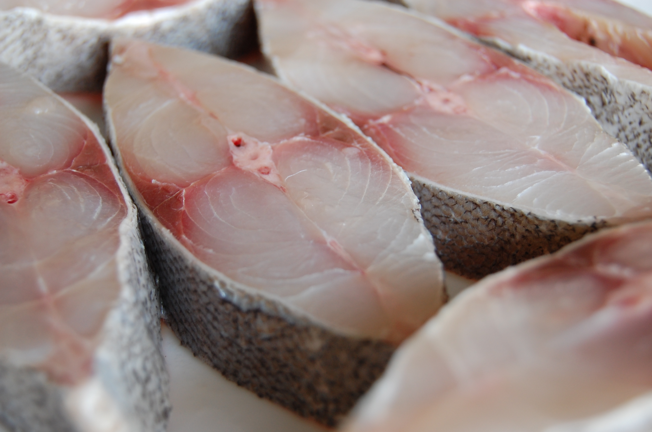 pomfret online dating Buy fish online from a delectable range of salmon, catla, black pomfret and many more types of fishes, prawns and crabs.