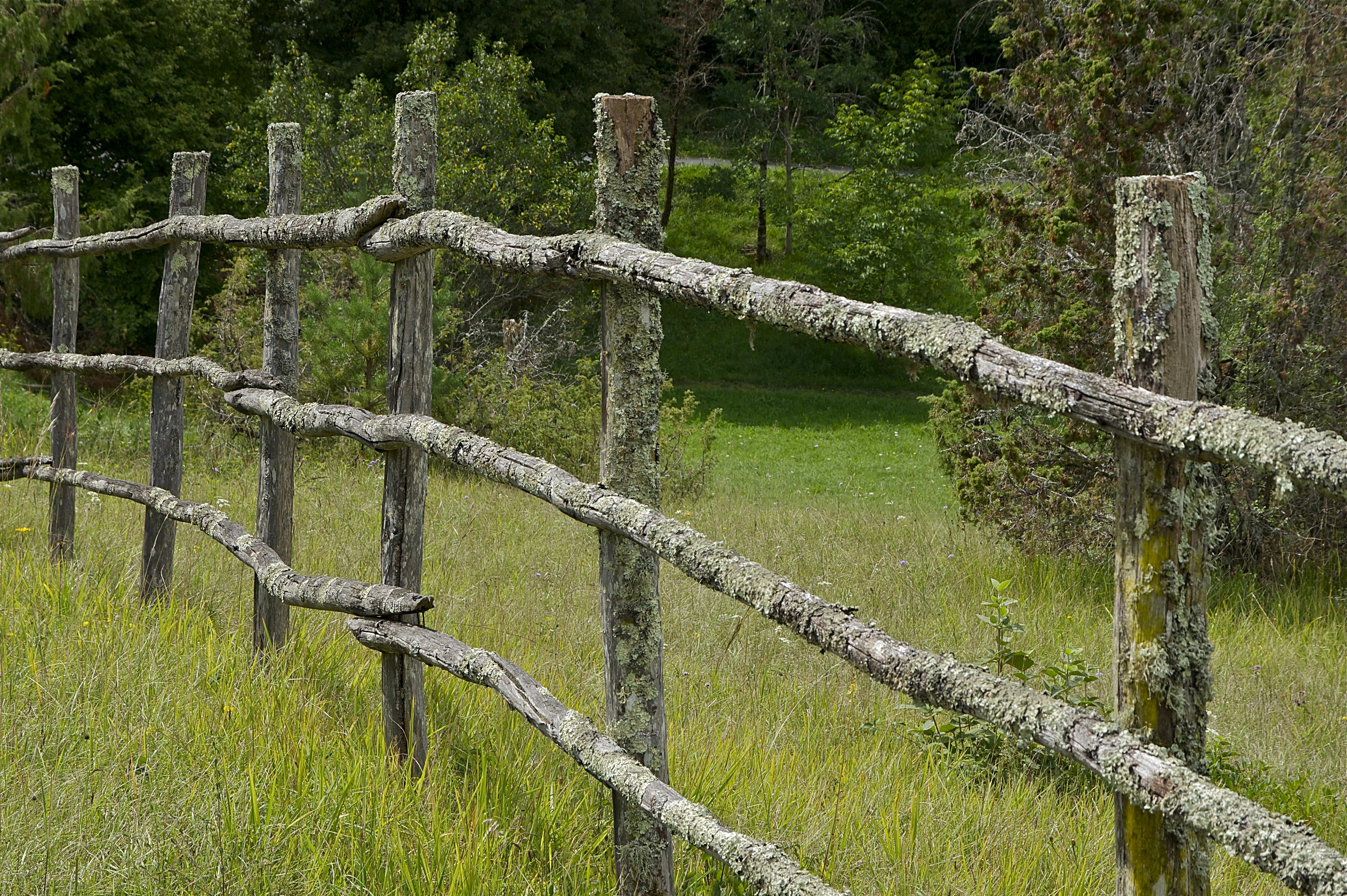 FileClôture bois Dordognejpg  Wikimedia Commons ~ Cloture En Bois