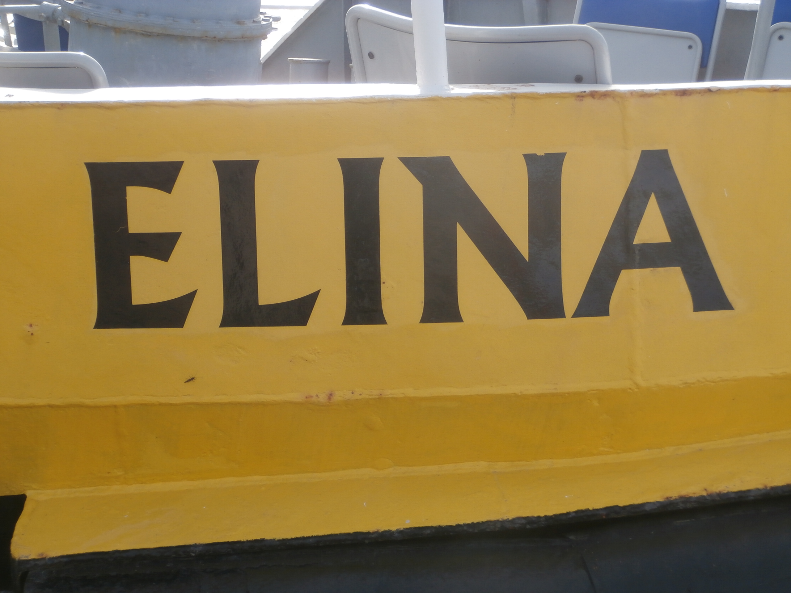 Name Elina: the meaning of the name, character and fate 53