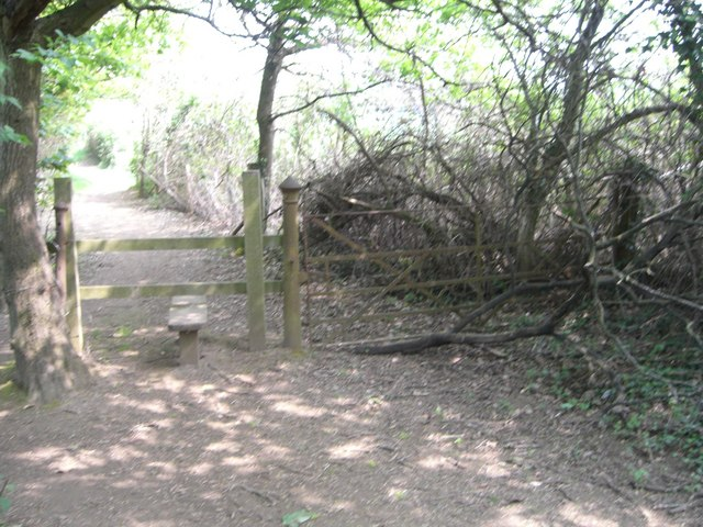 Entrance to Laurel Walk, St Leonard's Forest - geograph.org.uk - 430007