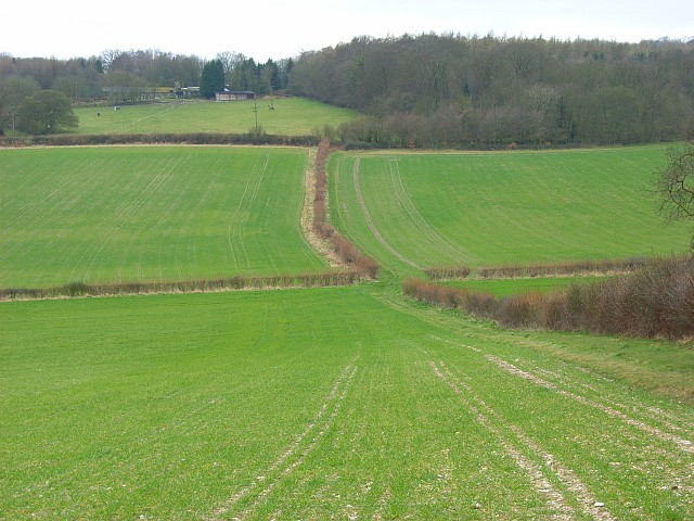 Farmland, Little Hampden - geograph.org.uk - 746162