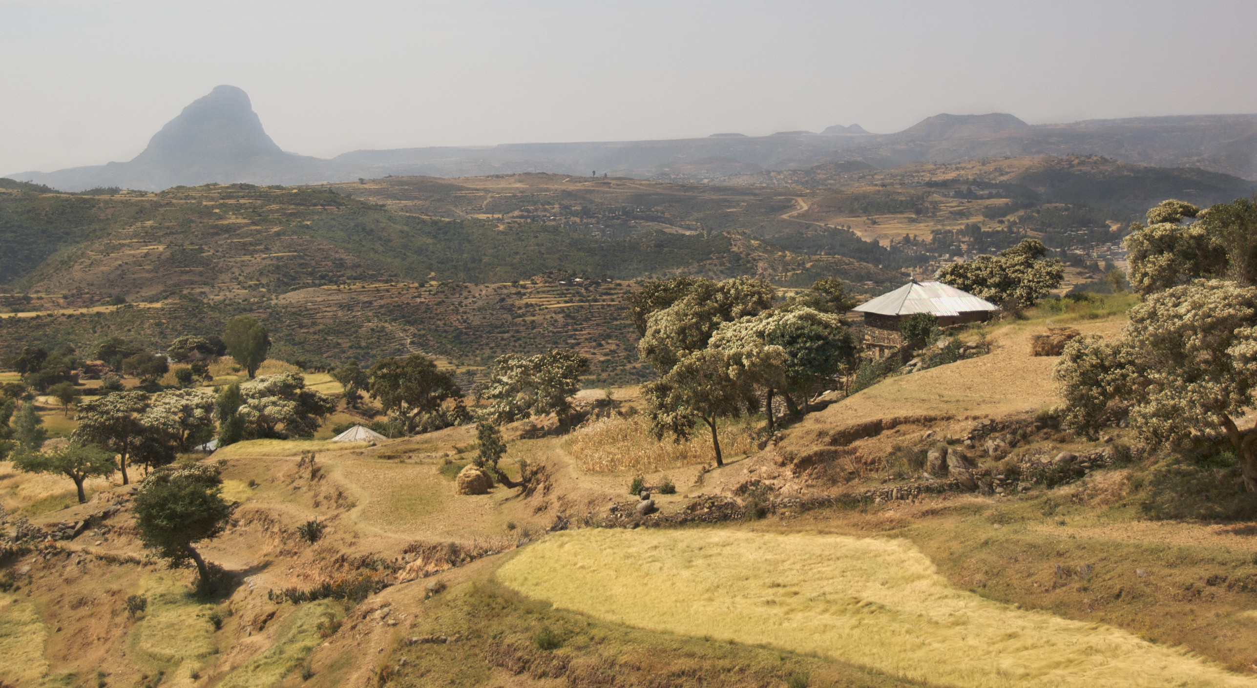 Free ethiopia tourists dating sites
