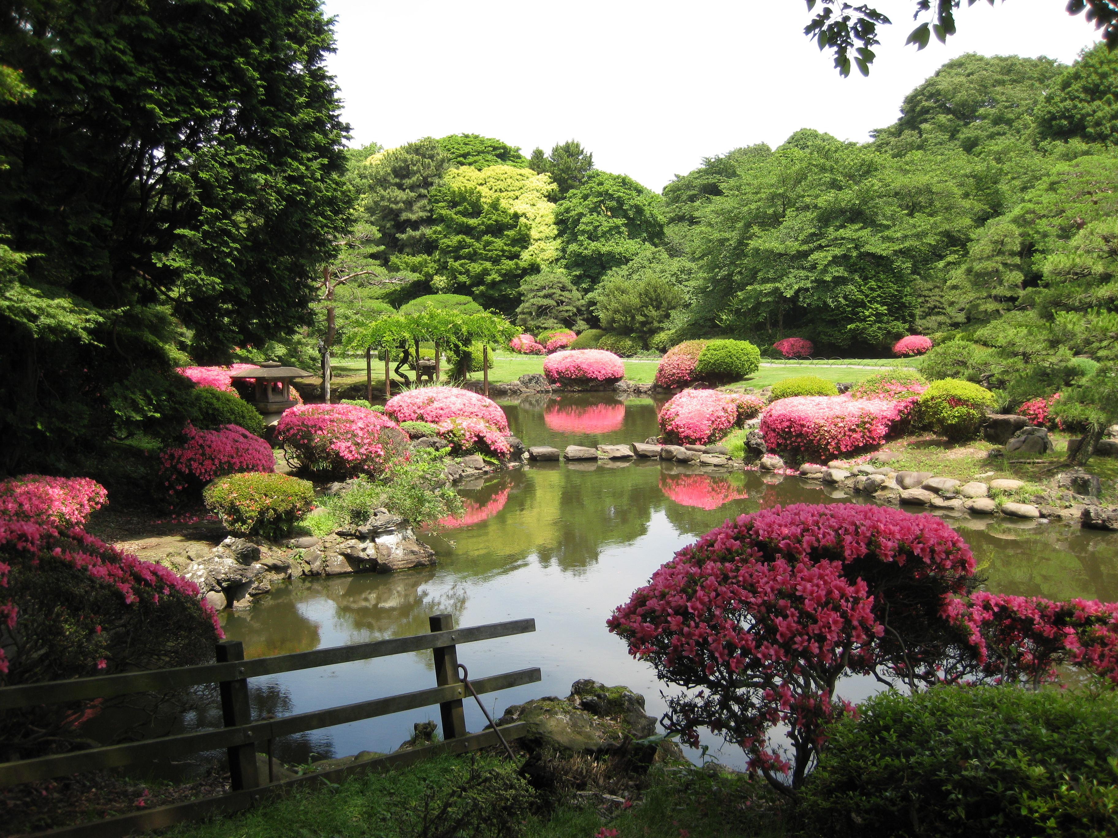 Image Result For Tokyo Garden