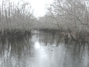 Lynches River Johonsonville Winter.jpg
