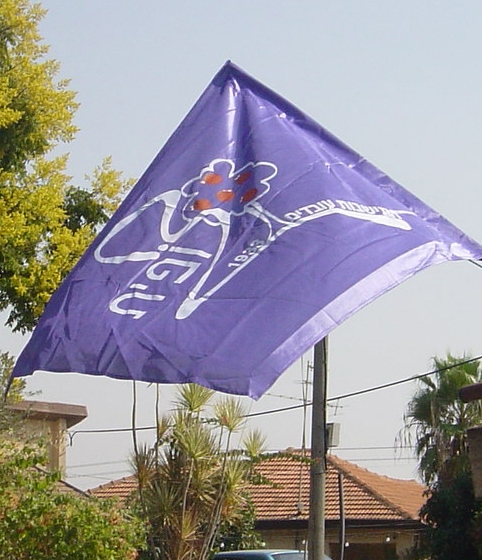 דגל מושב צופית