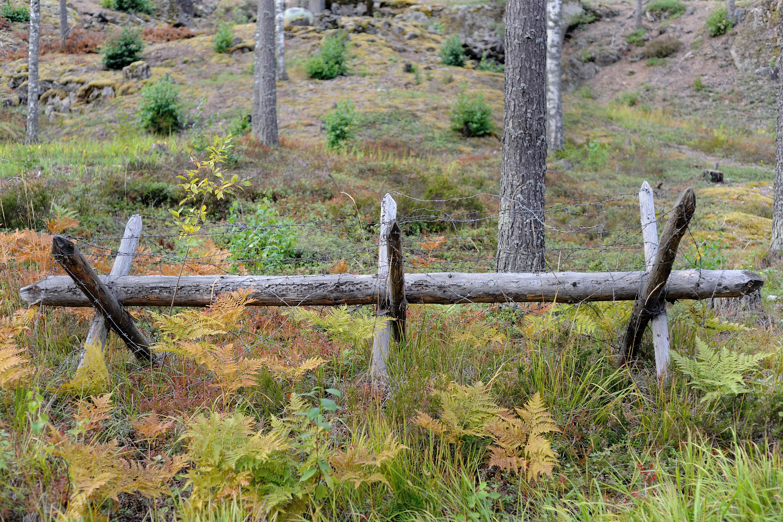 File salpa line chevaux de wikimedia commons - Chevaux de frise ...