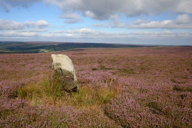 Standing Stone, Simon Howe - geograph.org.uk - 540083