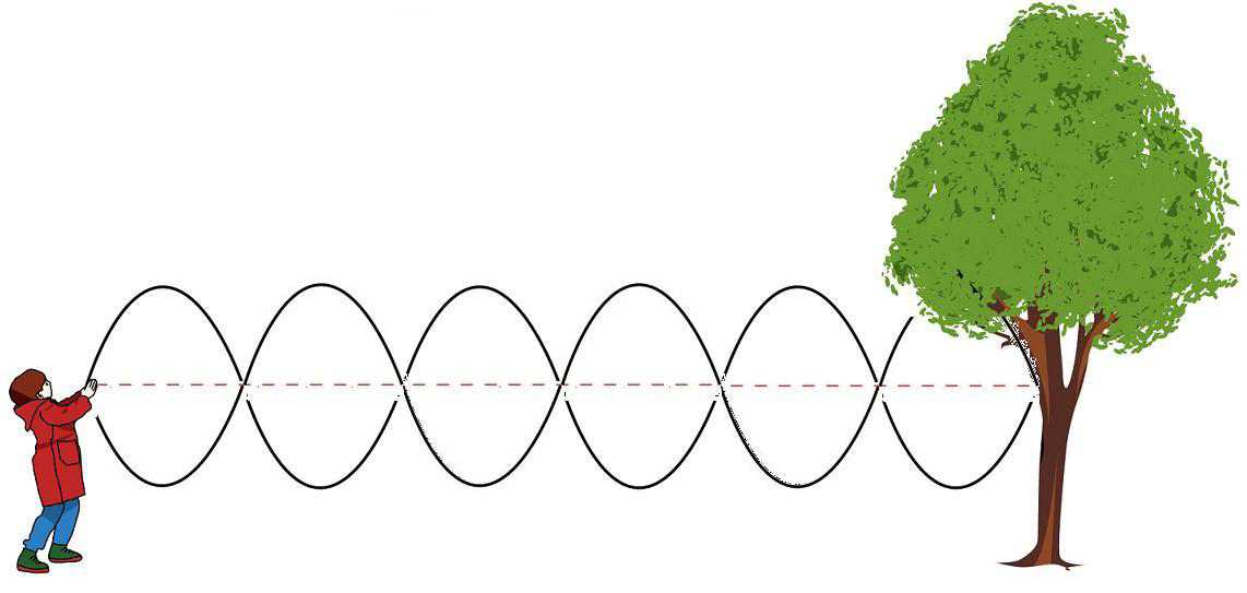 File Standing Wave In A Rope Png Wikimedia Commons