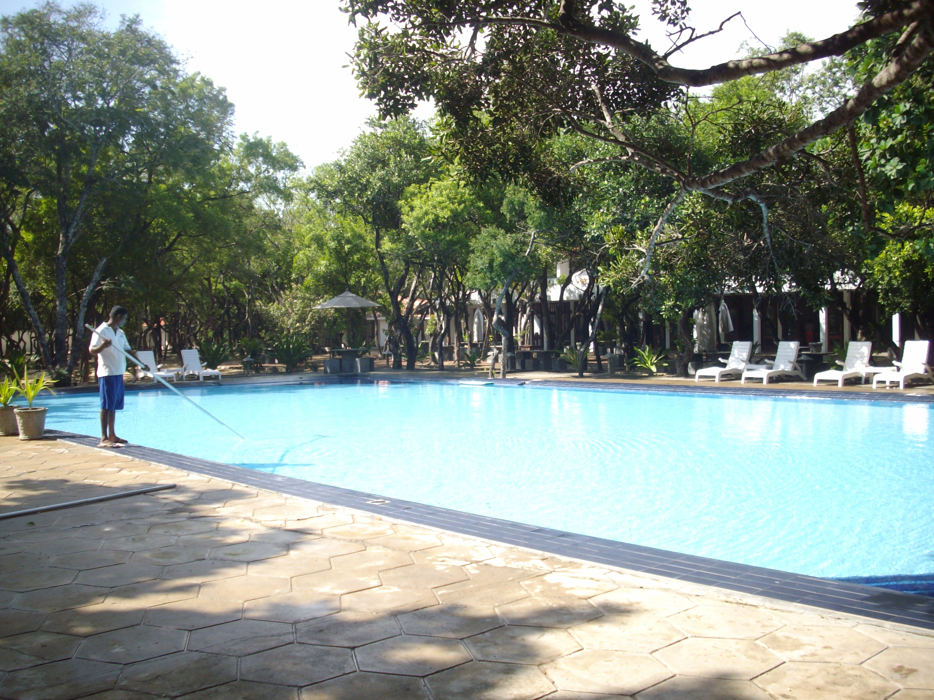 File Swimming Pool Of Lilaveli Beach Hotel At Nilaveli
