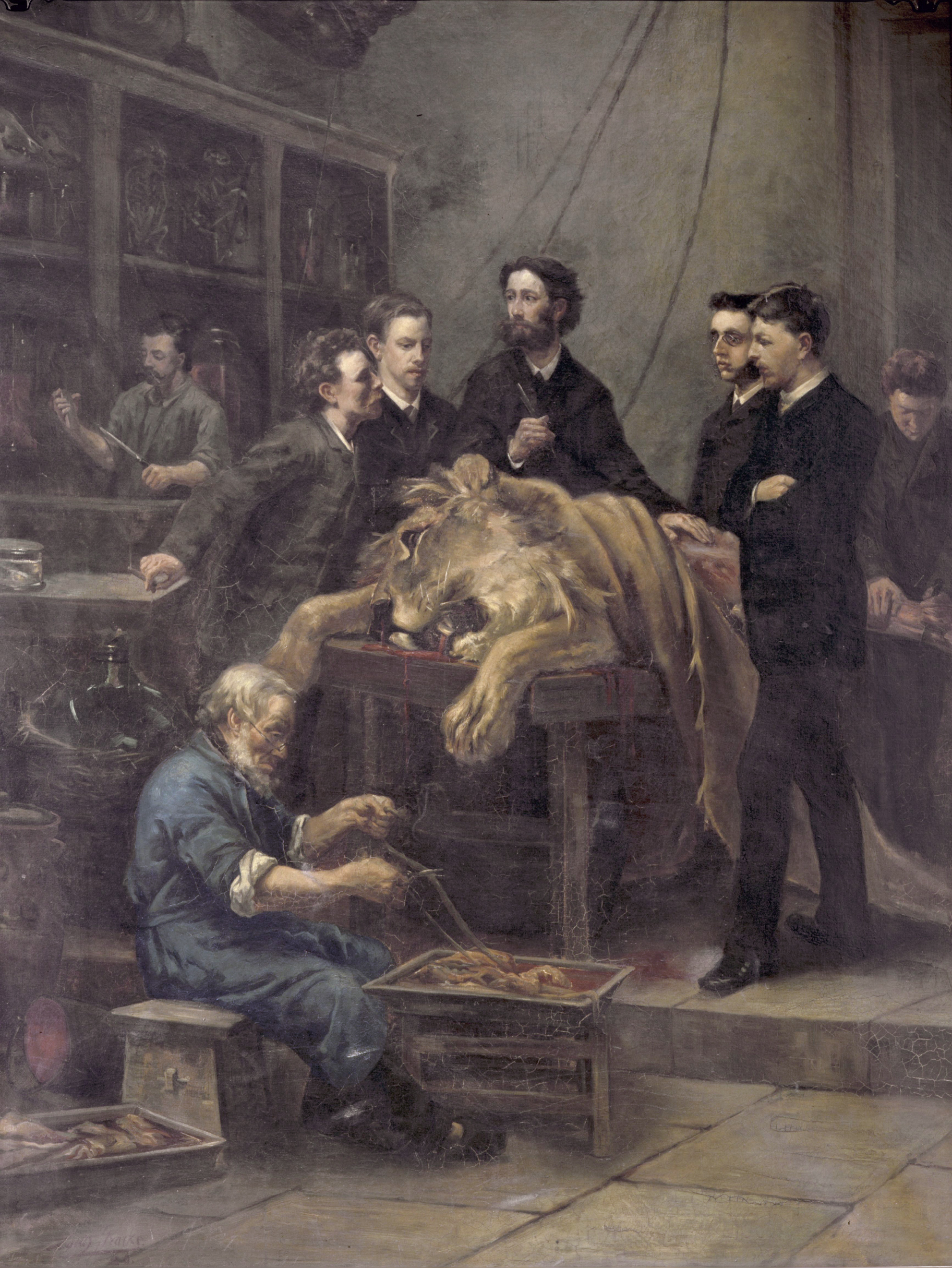 File:The Anatomy Lesson of Max Weber, by Lodewijk Ignatius Stracké ...