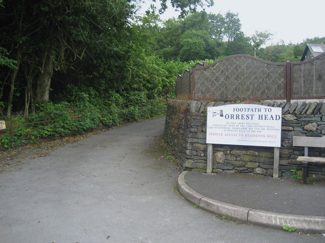 The Way to Orrest Head - geograph.org.uk - 1398768