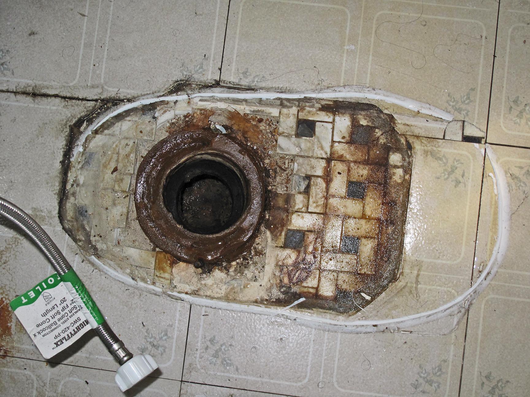 File Toilet Drain Jpg Wikimedia Commons