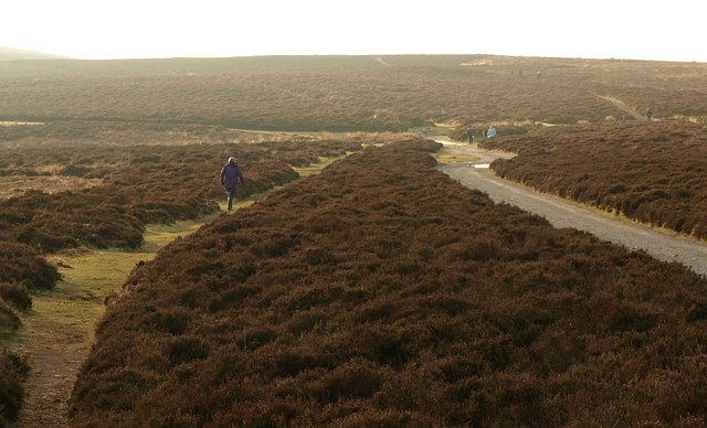 Walkers on the Long Mynd - geograph.org.uk - 1108449