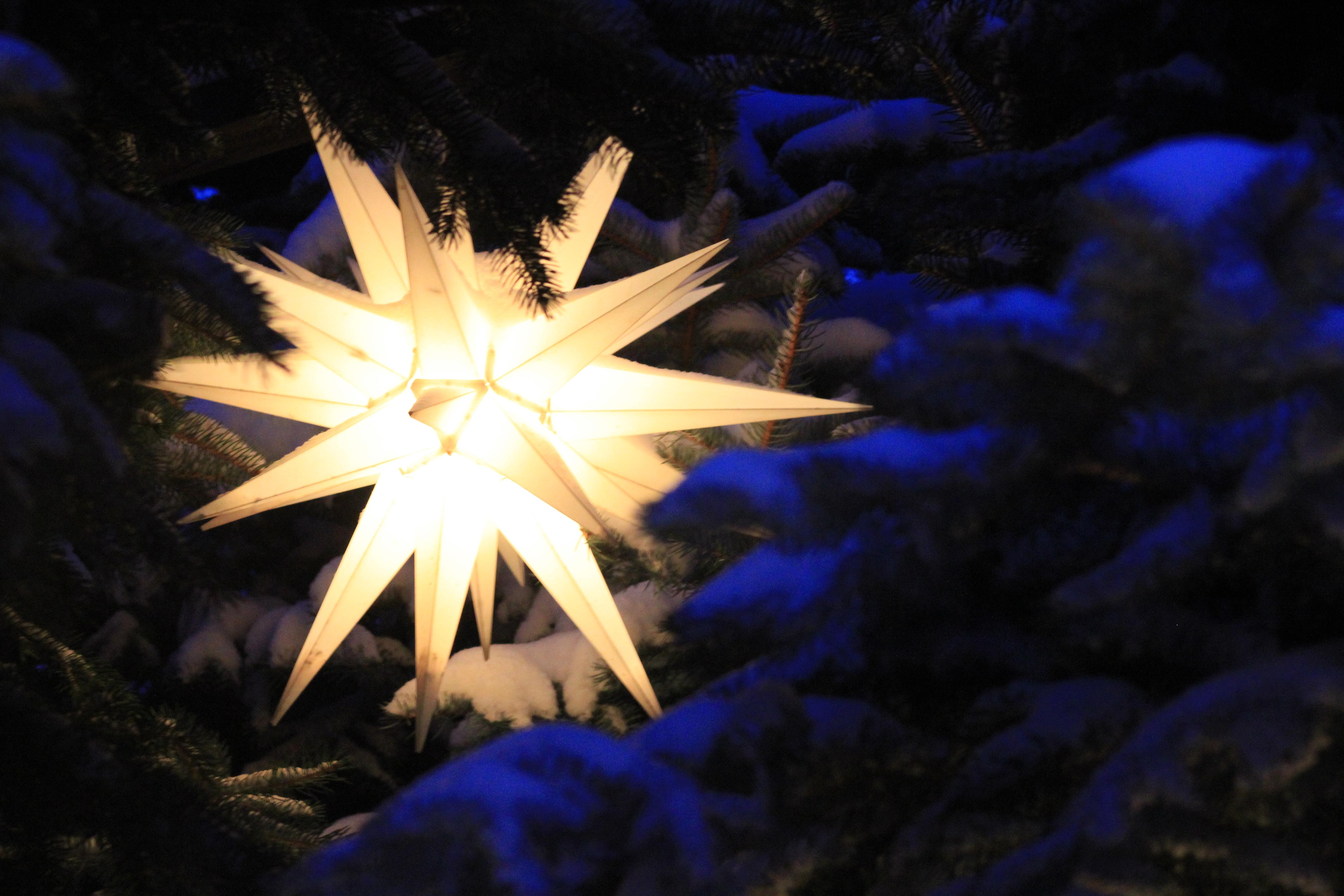 Weihnachtsstern Für Tannenbaum.Datei Weihnachtsstern Im Tannenbaum Licterhaus In Niederwürschnitz