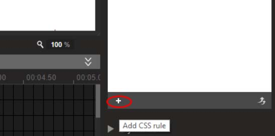 Add CSS rule.jpg