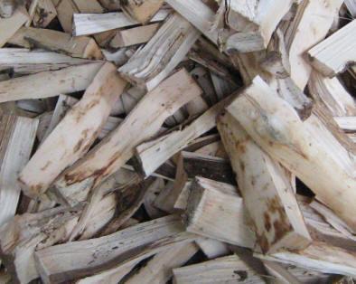 Berkas:Agarwood.jpg