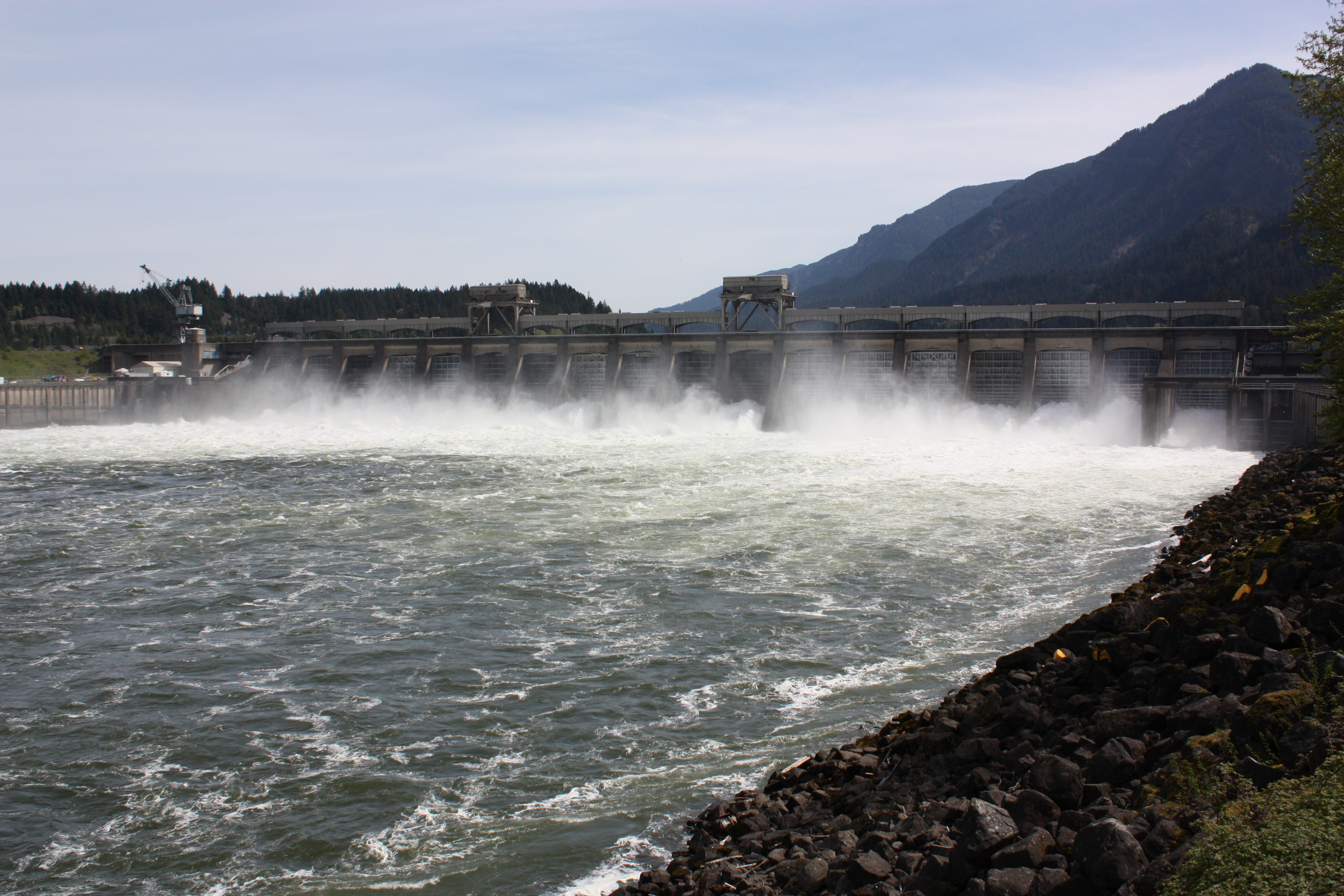 Spooled kamran walsh 39 s guide to fishing pacific for Bonneville dam fish camera