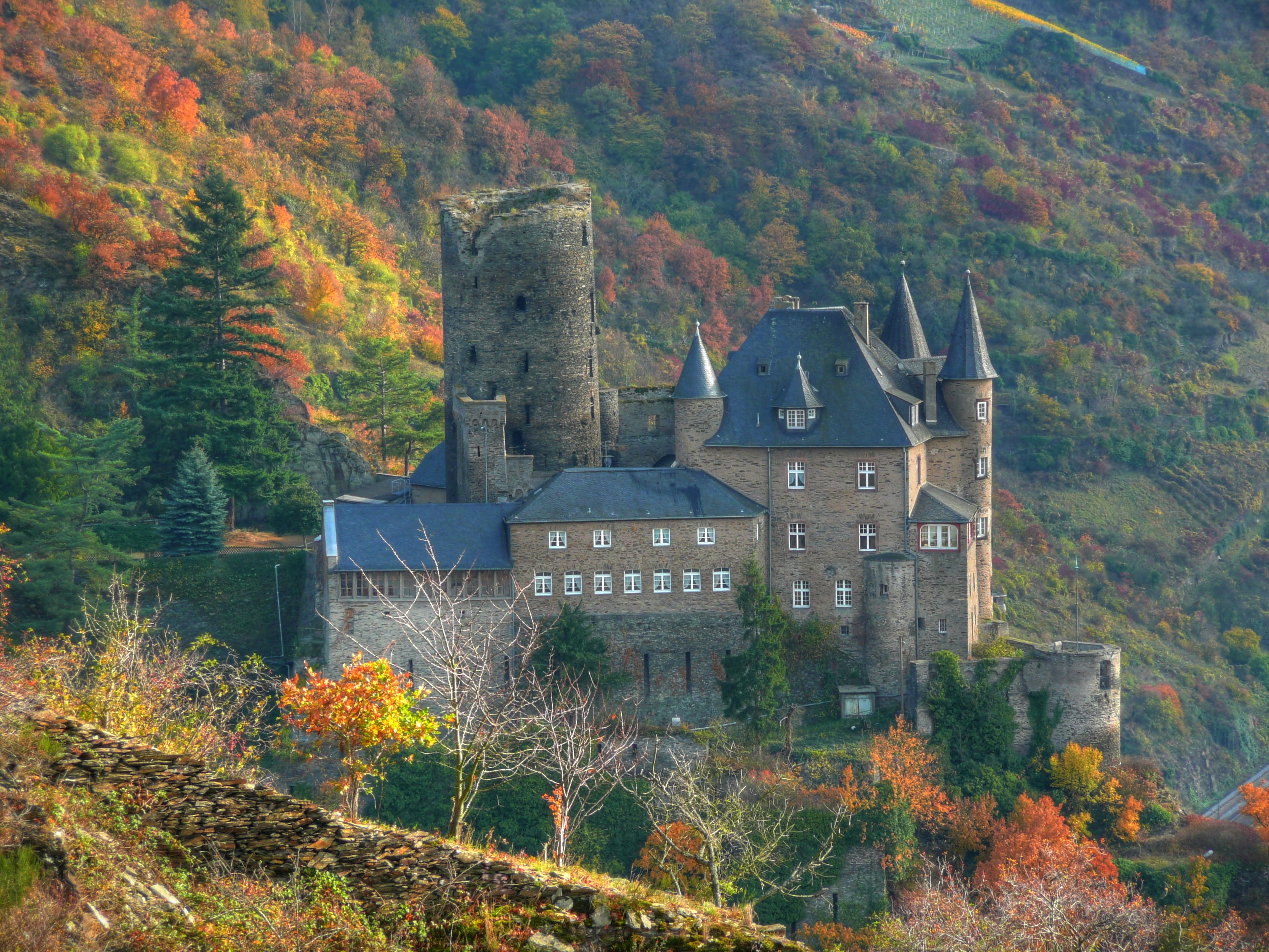 Burg Katz Above St Goarshausen and the Rhine River, Germany бесплатно